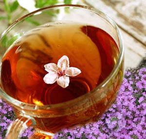 чай из душицы рецепты