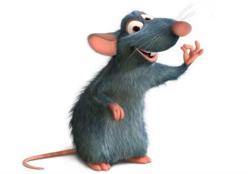 год петха 2017 для крысы