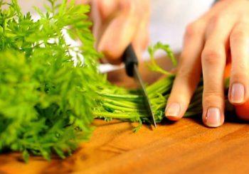 Морковная ботва, лечебные свойства и противопоказания